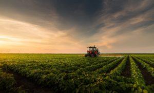 Marketing digital para o Agronegócio