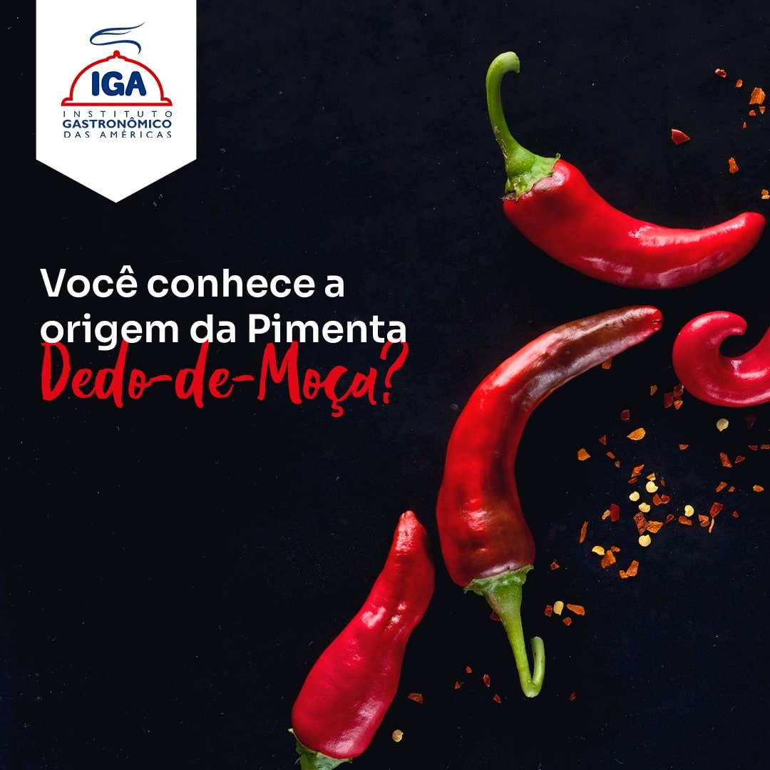 05 11 - IGA Cursos de Gastronomia
